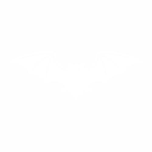 Летучая мышь - 4