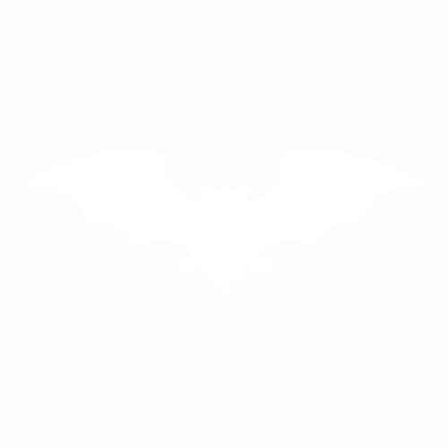 Летучая мышь - 5