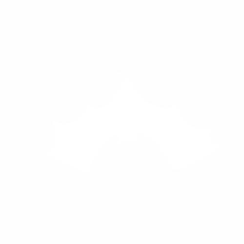 Летучая мышь - 6