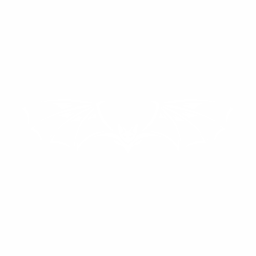 Летучая мышь - 7