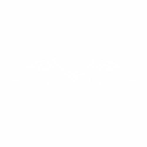 Летучая мышь - 8