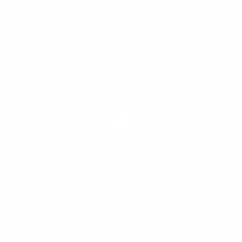 Летучая мышь - 9