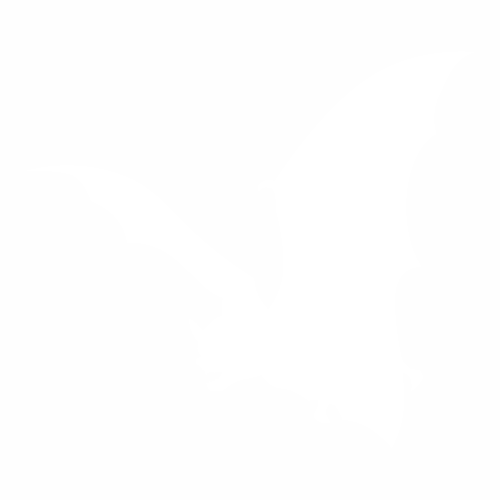 Летучая мышь - 11