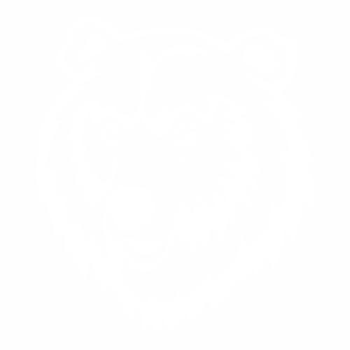 Медведь - 3