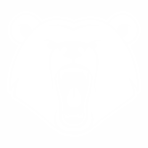Медведь - 4