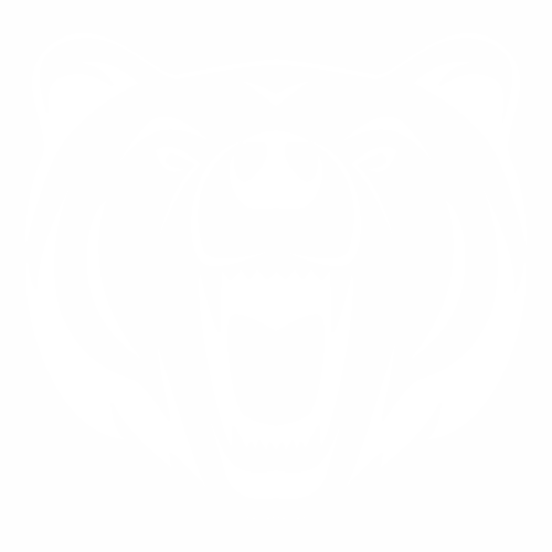 Медведь - 6