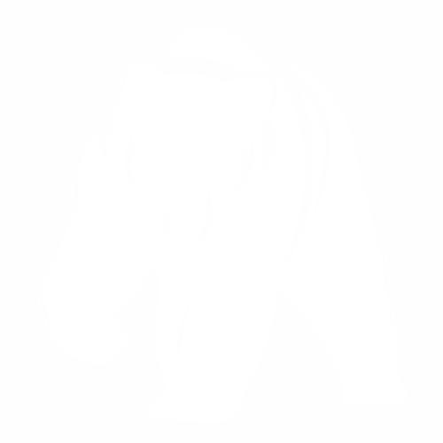 Медведь - 8