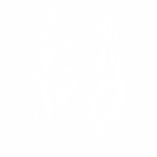 Медведь - 9