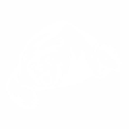 Медведь - 11