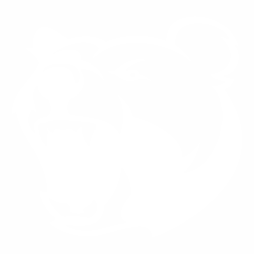 Медведь - 12