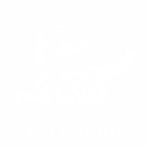 Медведь - 16
