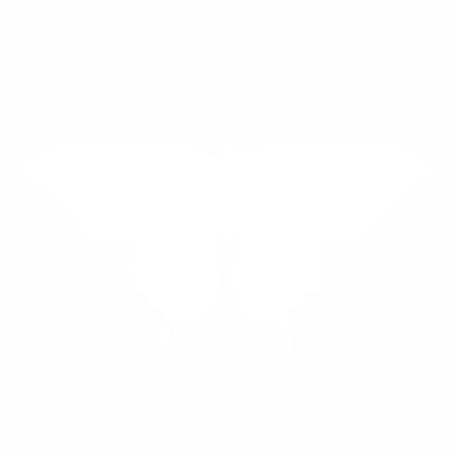 Бабочка - 4