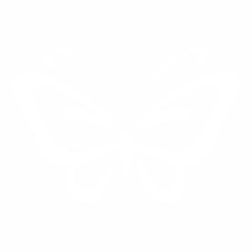 Бабочка - 10