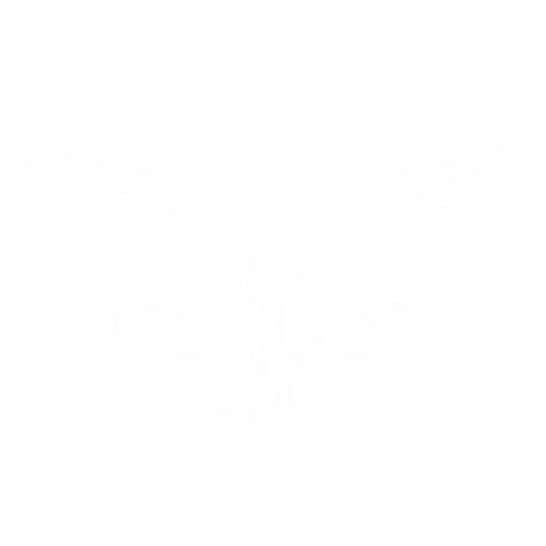 Бабочка - 13
