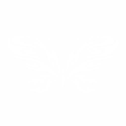 Бабочка - 14