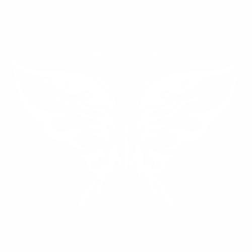 Бабочка - 15