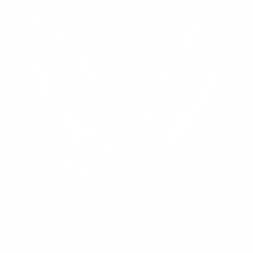 Бабочка - 16