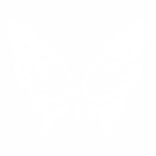 Бабочка - 17