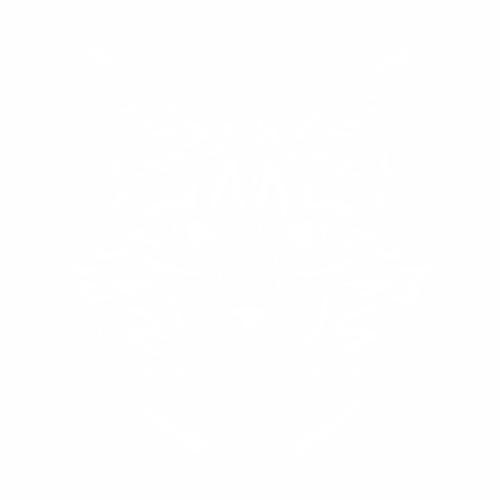 Кошка - 1