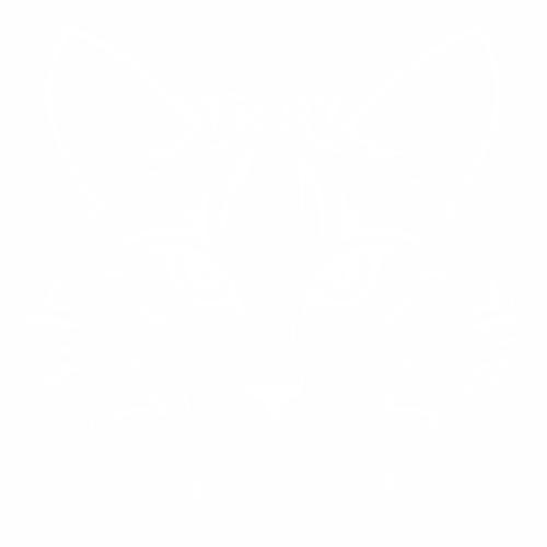 Кошка - 3