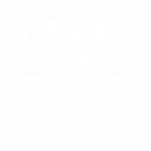 Кошка - 4