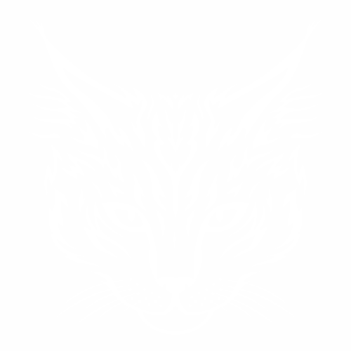 Кошка - 5