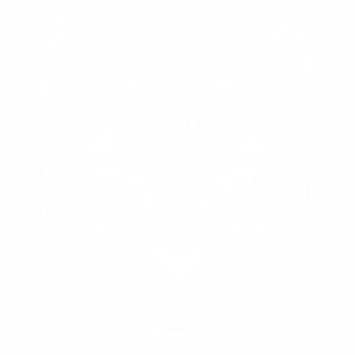Кошка - 9