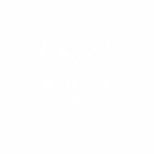 Кошка - 10
