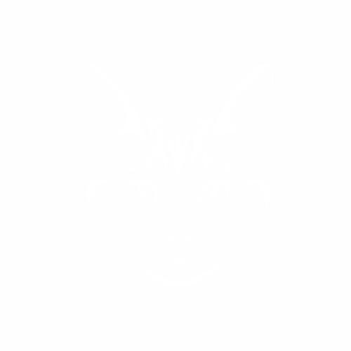 Кошка - 11