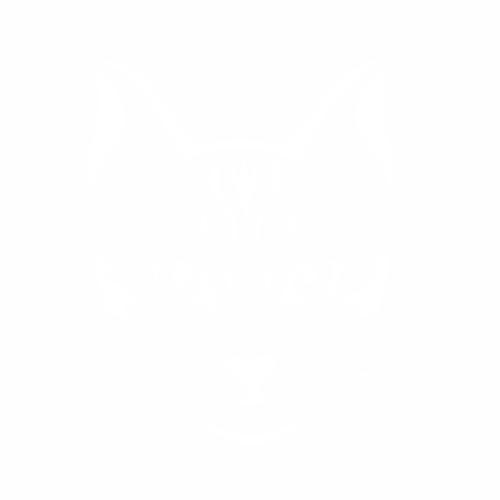 Кошка - 12