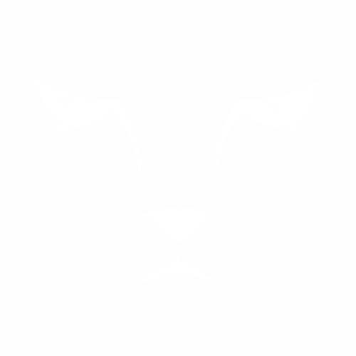 Кошка - 24
