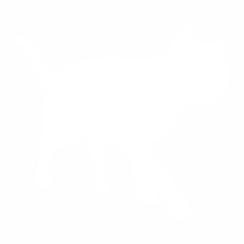 Кошка - 27