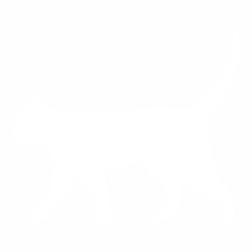 Кошка - 28