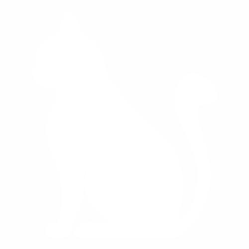 Кошка - 29