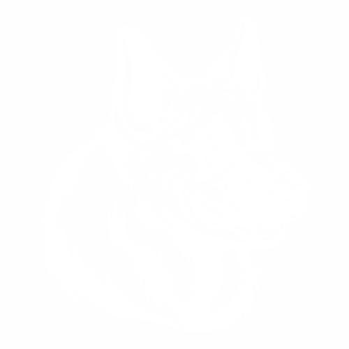 Овчарка - 4