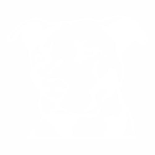 Питбуль - 3