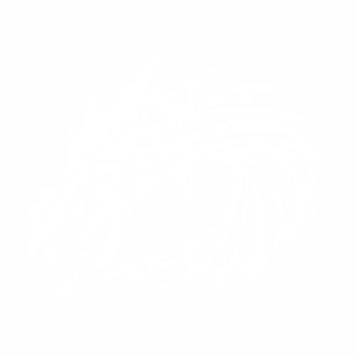 Дракон - 1
