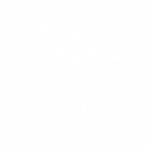 Дракон - 3