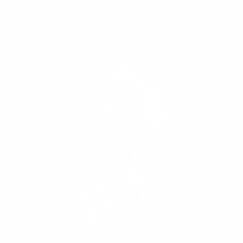 Дракон - 4