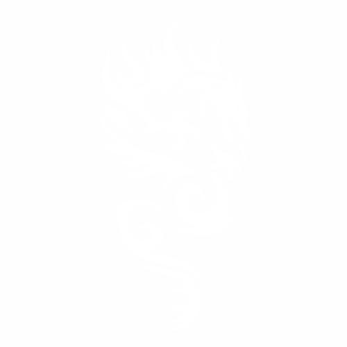Дракон - 8