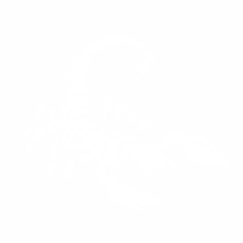 Скорпион - 2