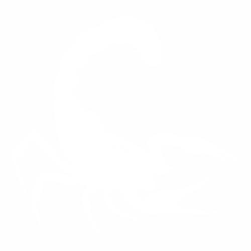 Скорпион - 6