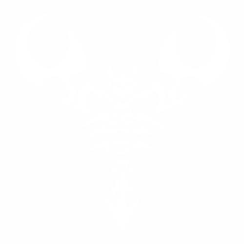 Скорпион - 12