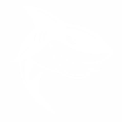 Акула - 1