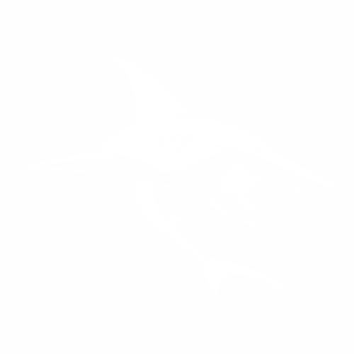 Акула - 2