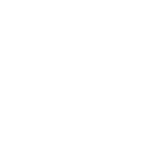 Акула - 5