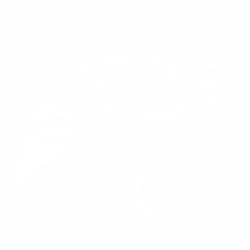 Змея - 2