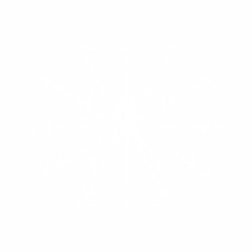 Наклейка паук на паутине