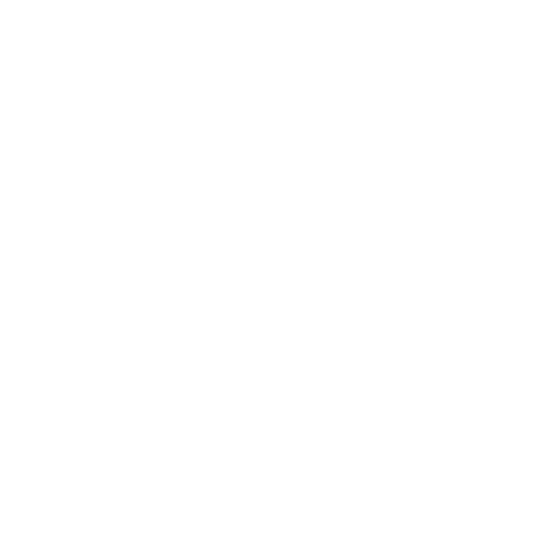 Lion with krown