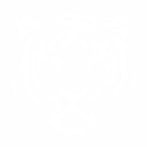 Тигр - 1